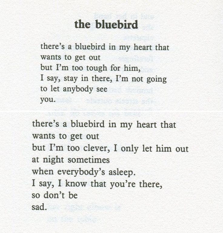 Charles Bukowski Quotes Charles Bukowski Bluebird In My Heart Quotes Poeme Et Citation Bukowski Charles Bukowski