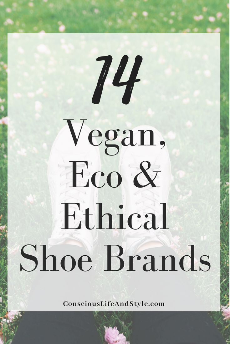 7c4e83d19 A guide to 14 brands with vegan