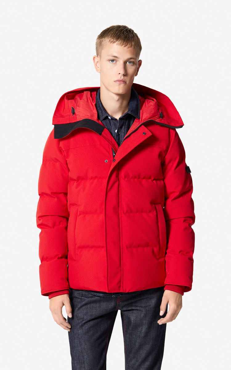 b4dc59a9 MEDIUM RED Quilted down jacket for men KENZO | AW20 MENS | Jackets ...