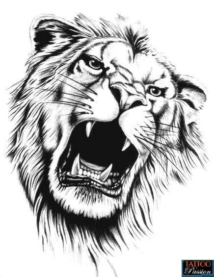 idea for lion tattoo lion tatouage lion tatouage dessin lion. Black Bedroom Furniture Sets. Home Design Ideas