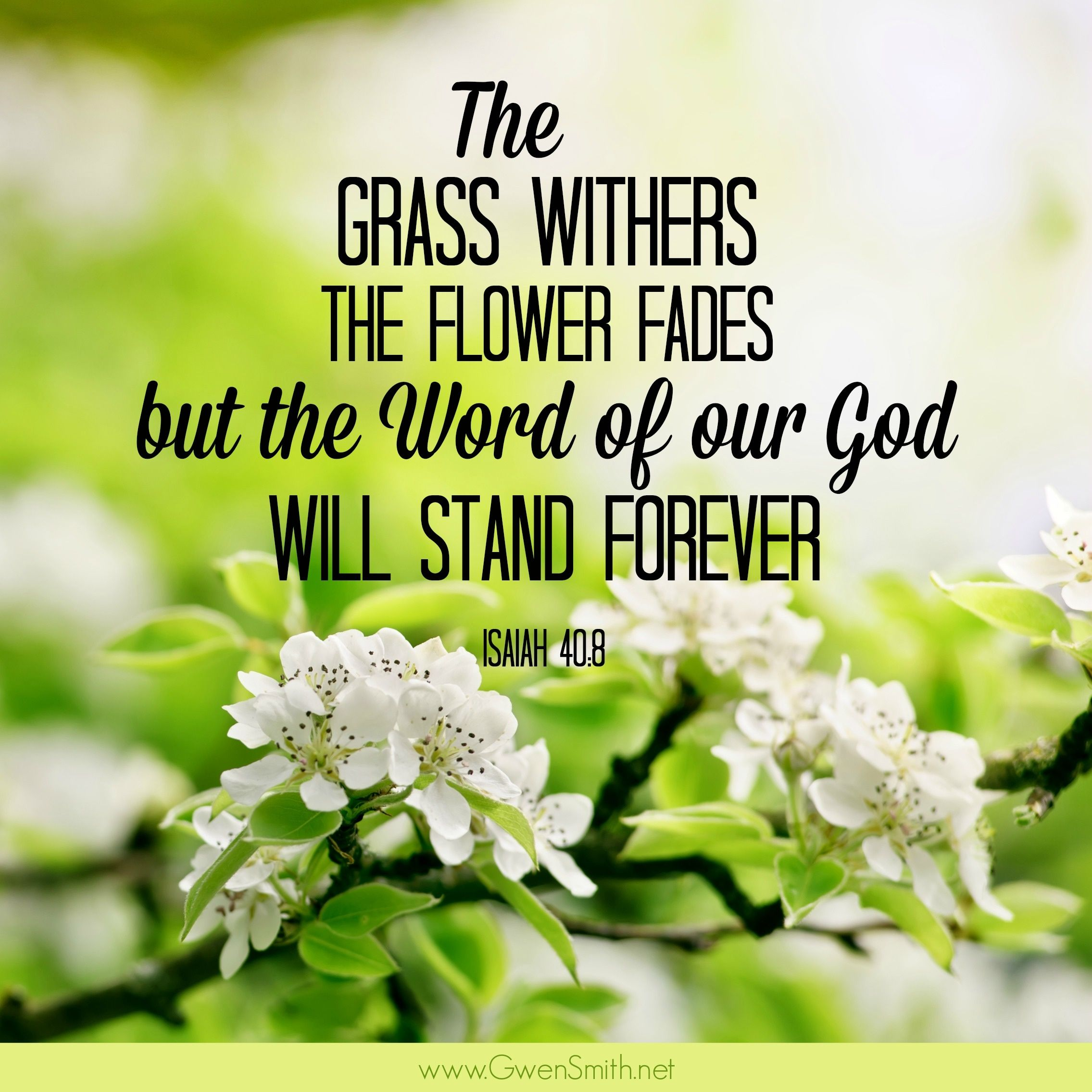 The Word Of Our God Will Stand Forever Isaiah 40 8