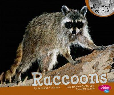 Raccoons (Book) : Johnson, J  Angelique :