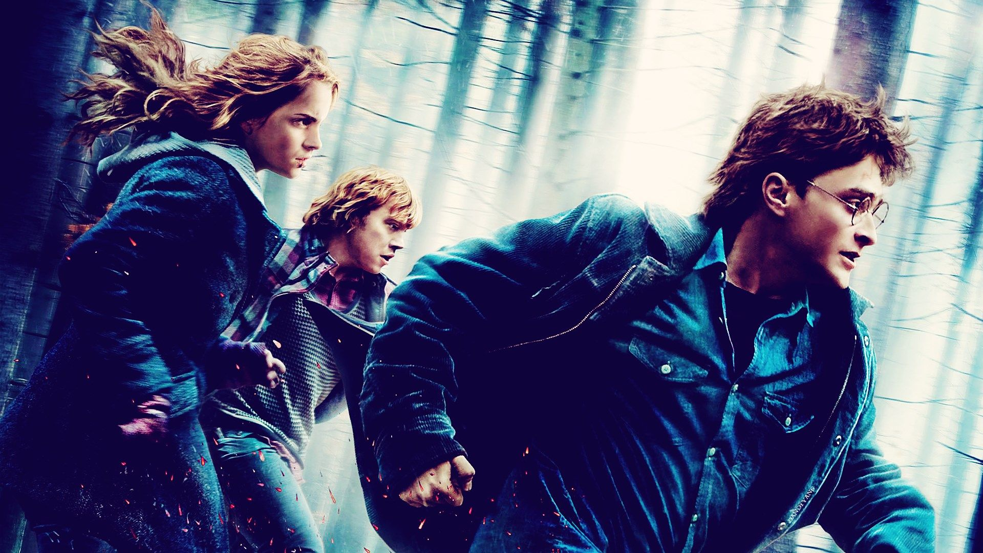1920x1080 Widescreen Wallpaper Harry Potter And The Deathly