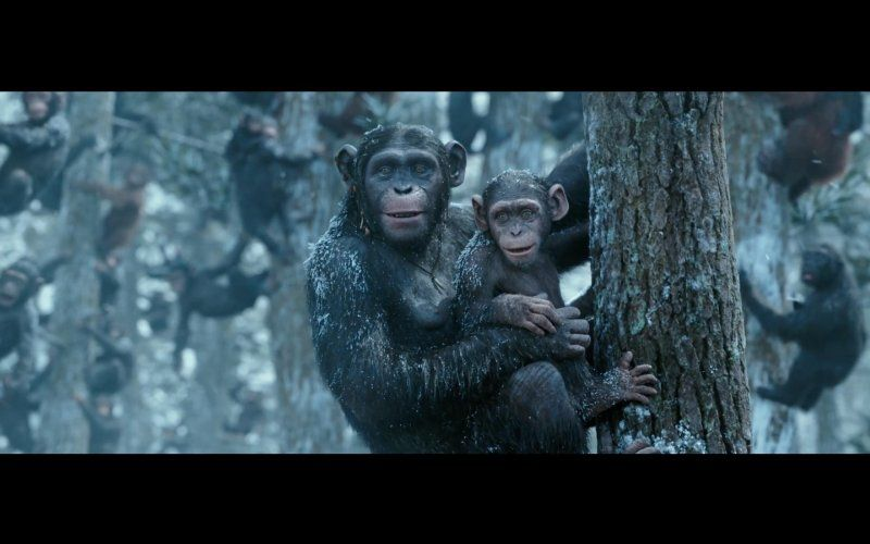 War For The Planet Of The Apes 2017 Planet Of The Apes Dawn Of The Planet Apes