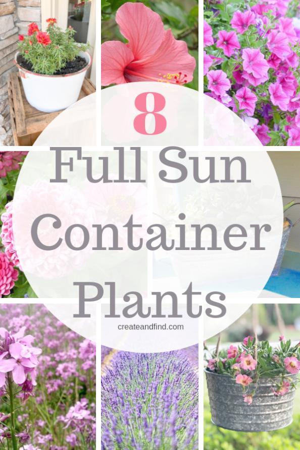 Container Gardening Ideas Pinterest Or Landscape Gardening Work