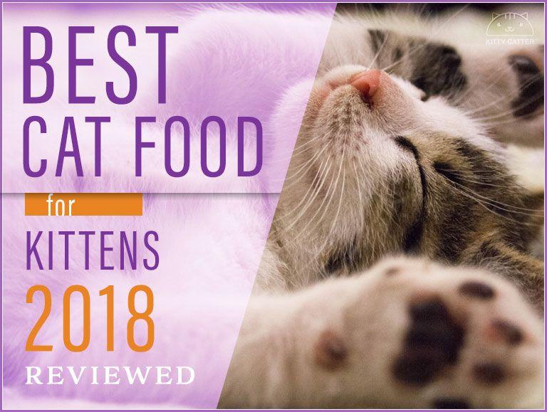 Best Kitten Food 2020 Kitten Food Cat Nutrition Cat Food