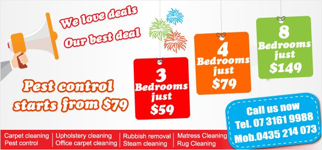 Carpet Cleaning Brisbane 3 Rooms 59