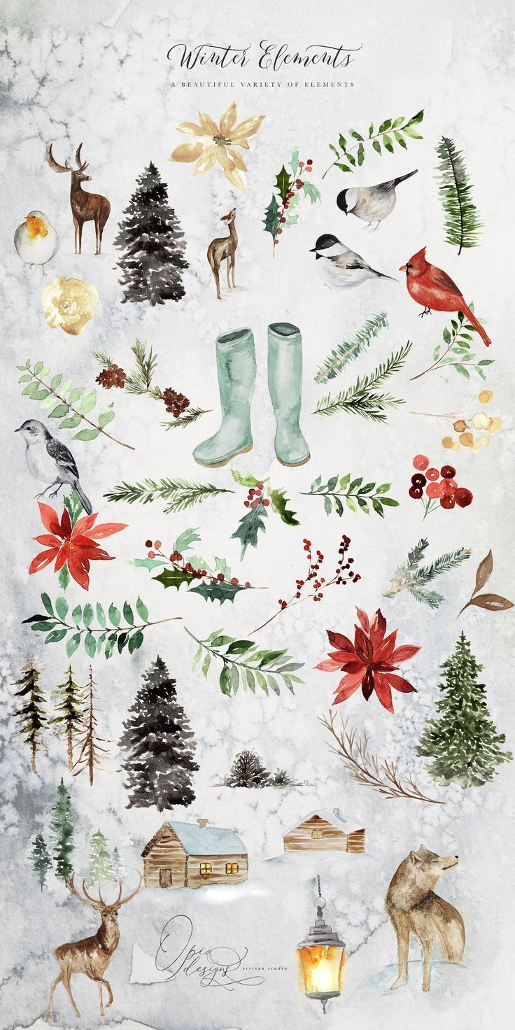 Photo of Evergreen – Wintertide Collection by OpiaDesigns at the Creative Market Evergreen is …