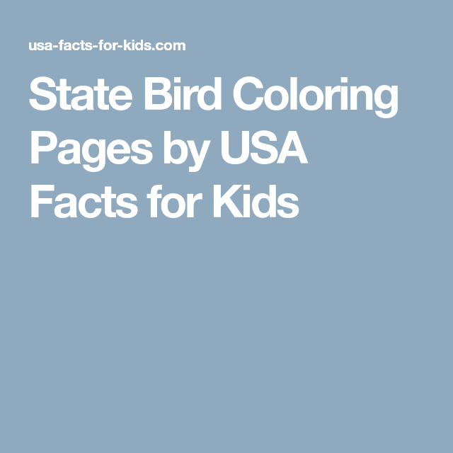 State Bird Coloring Pages By Usa Facts For Kids Usa Facts And Bird