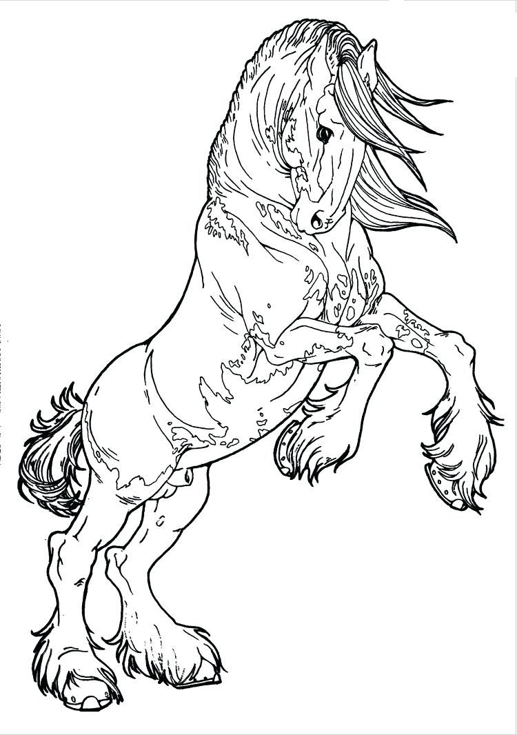 Horse Coloring Pages That Look Real Codeadventuresco In Rearing Horse Coloring Pages Free Downloa Horse Coloring Horse Coloring Pages Animal Coloring Pages
