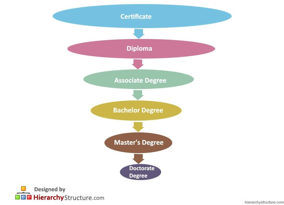 college degree levels in order
