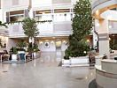 Mayo Clinic Hospital Atrium at the Phoenix campus- been there and