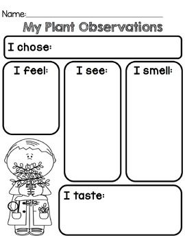PAPA IS A POET: SCIENCE   Nature Observation printables   Third ...