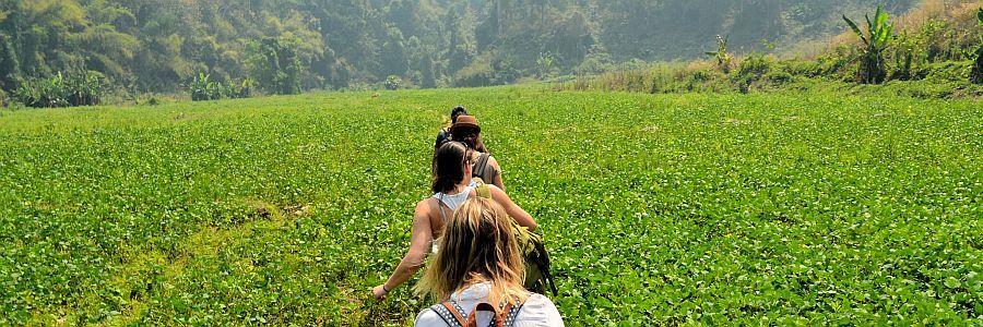 Alle Infos zum flexiblen Backpacking in Thailand und der Welt