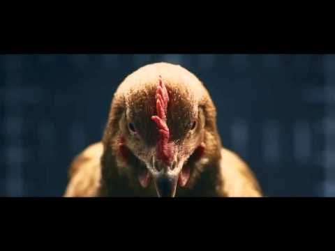 Autowerbung mit Huhn :-)
