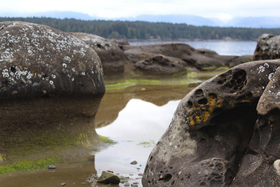 A Photo Tour - Denman & Hornby Island, British Columbia - FreeYourMindTravel