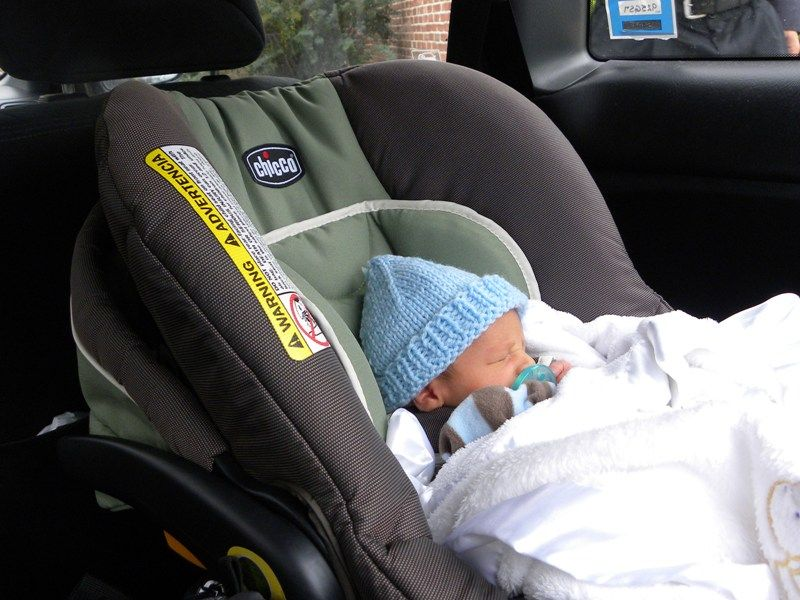 how to get baby roaches out of car