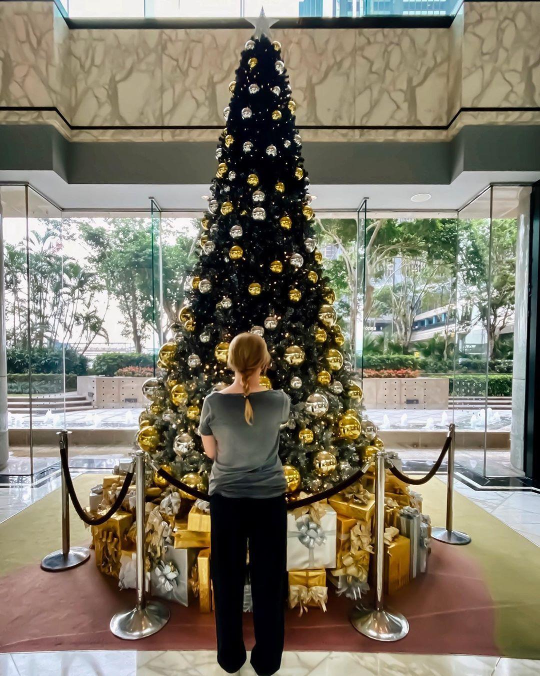 Hong Kong 2019 December In 2020 Beautiful Hotels Christmas Tree Instagram