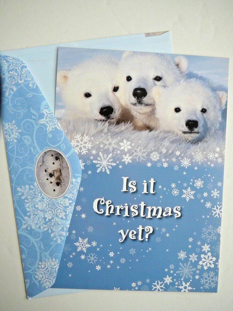 National Wildlife Federation Christmas Card Polar Bears NEW Photo ...