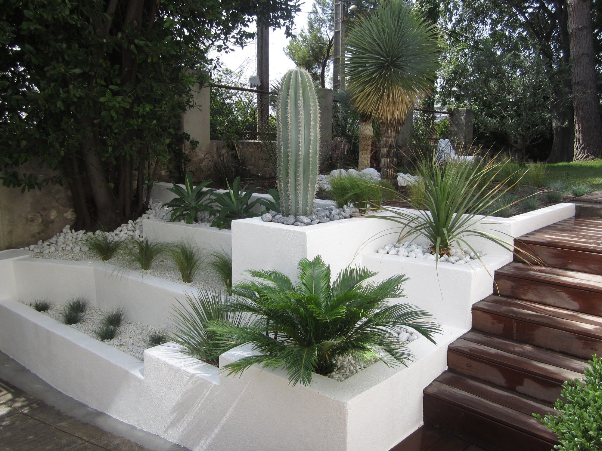 Voici un exemple d am nagement de l entr e principale d for Photo jardin moderne design