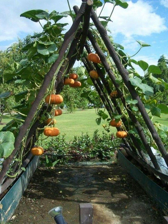 80 Affordable Backyard Vegetable Garden Design Ideas - DoMakeover.com #gardendesign