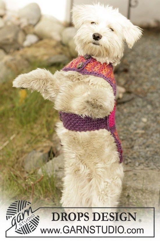 manteaux pour chiens chien pinterest dog sweaters crochet dog sweater et crochet. Black Bedroom Furniture Sets. Home Design Ideas