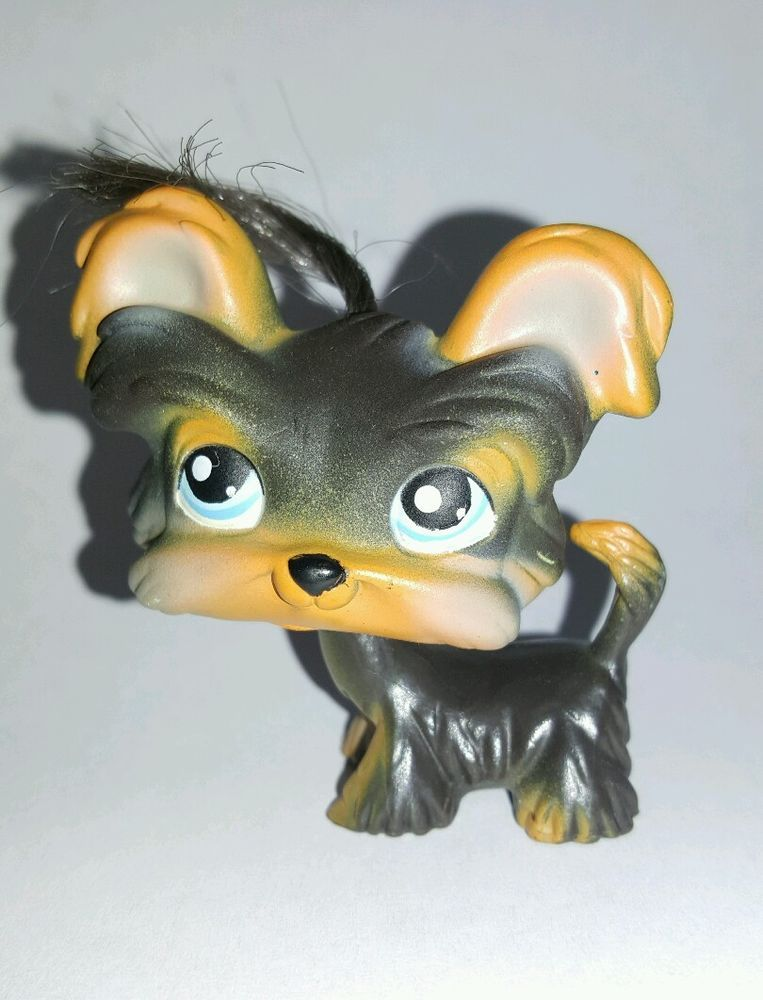 Littlest Pet Shop Dog Brown Yorkie Shih Tzu Hair Blue Eyes 141