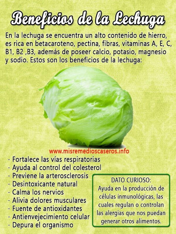 Beneficios De La Lechuga Nutrition Facts Healthy Eating Good Health Tips Health And Nutrition