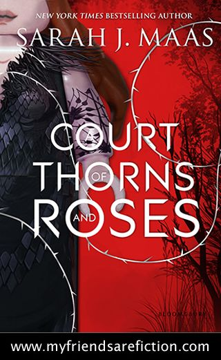 Acotar Lego With Images Cover Art Cover