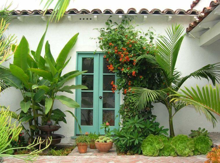 plantes grasses en 26 ides jolies et adaptatives - Les Plantes Grasses D Exterieur