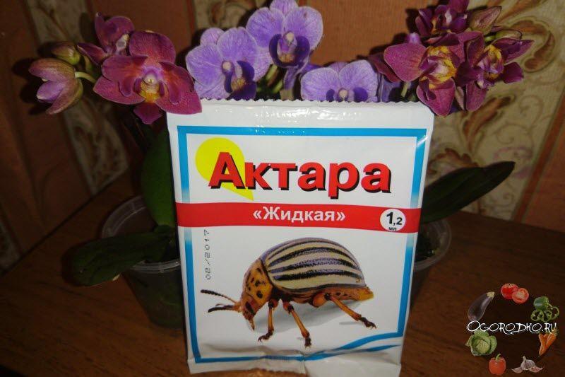 Актара – инструкция по применению, от чего помогает, для ...
