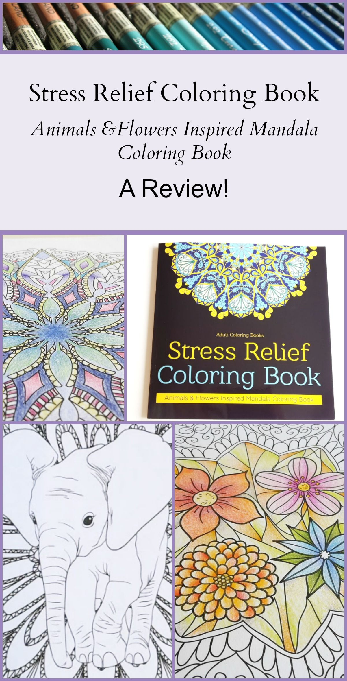 This Adult Coloring Book Is A Creation Of Vanilla