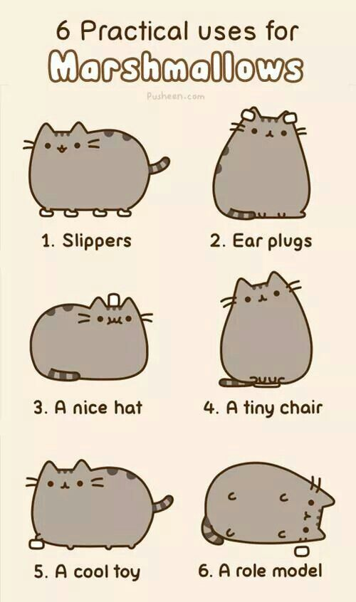 3776a7d8add8ab28cbb55dda560e43c4 pusheen cat pusheen cat pinterest pusheen cat, pusheen and