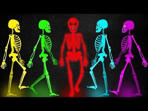 50 Cinco Esqueletos Salieron Una Noche Canciones Infantiles Pueblo Teehee Youtube Fotos Contação De História Infantil