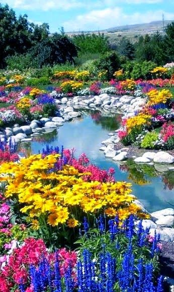 Flower Love Beautiful Gardens Beautiful Flowers Dream Garden