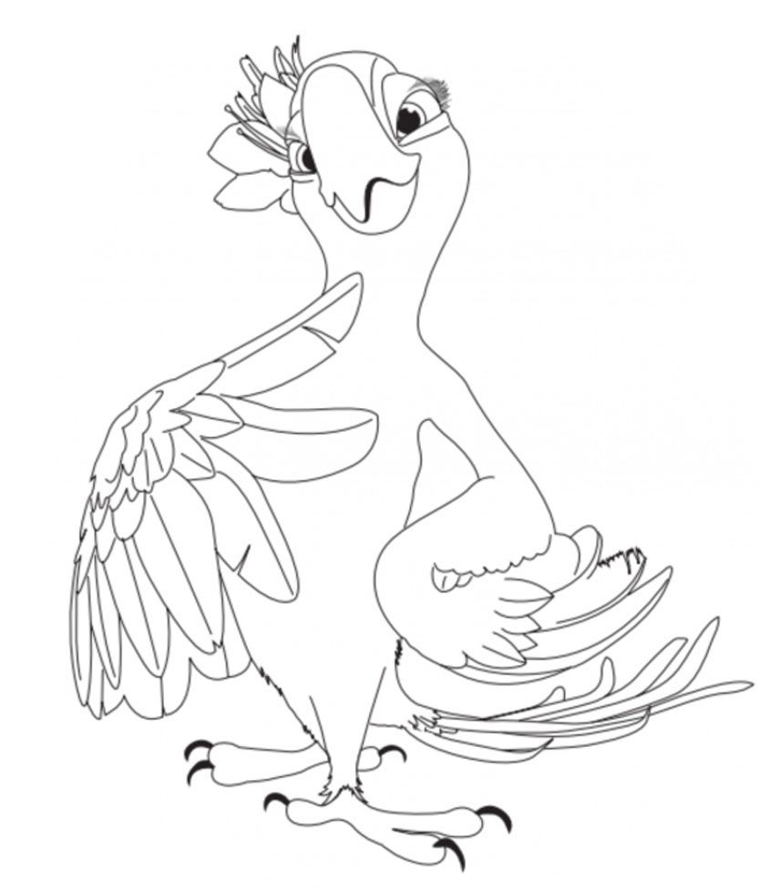 Rio Coloring Pages Free Kids Coloring Pages Bird Coloring Pages Coloring Pages