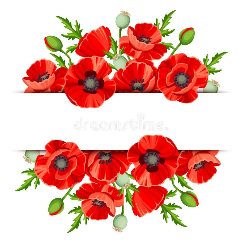 TWO RED POPPIES BA-B015 Bug Art Greeting Card