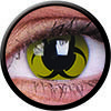 Match your Halloween costume with our designed scary decorative contact lenses, available in various designs for your selection. Find out more. LensVillage.com is a web store that sell wide range of circle color lenses. We provide different design and color of circle lenses up to 400 choices!