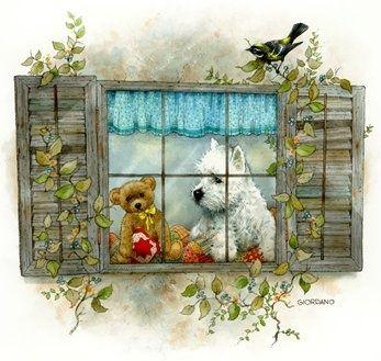 Gordano - teddy and doggie sitting in a window