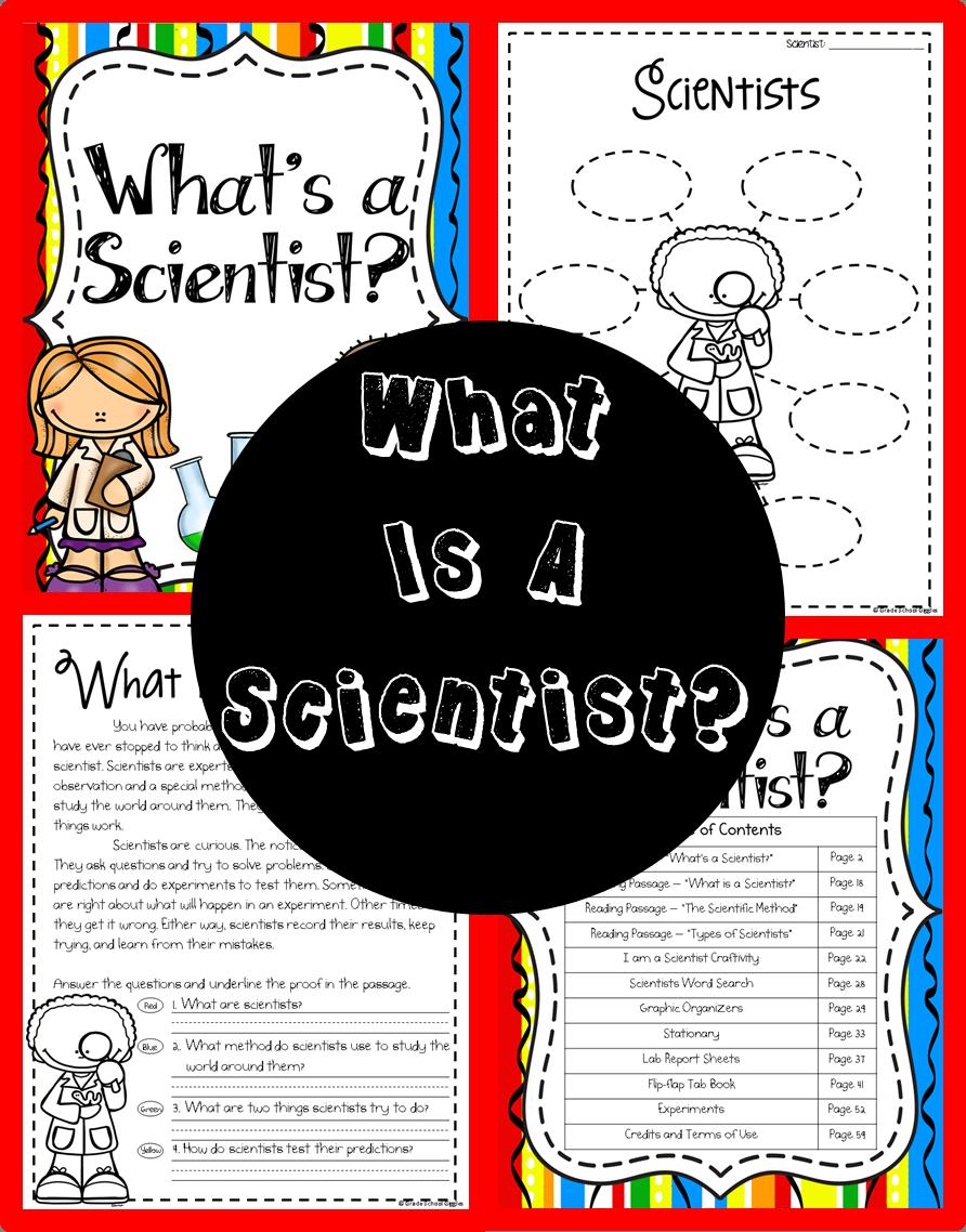 What Is A Scientist What Is A Scientist What Do Scientists Do Scientist
