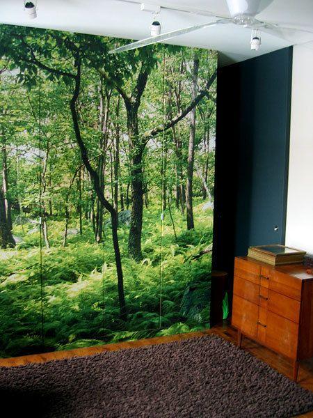 woodland photo mural covering closet doors