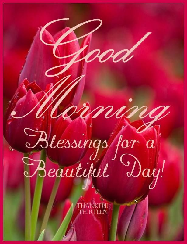 Good Morning! Blessings For A Beautiful Day!