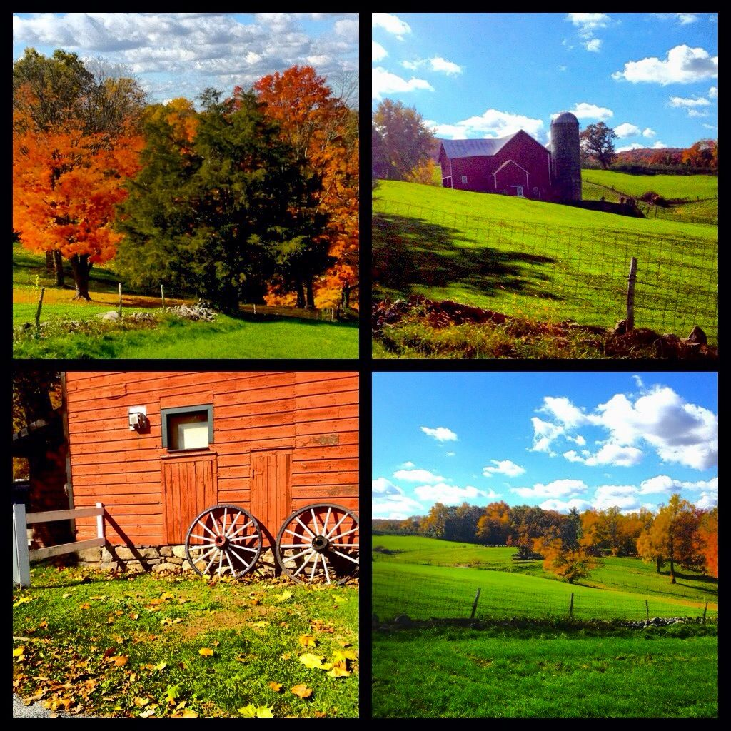 Harvest Antique Barn, Aka, Warwick Antique Barn