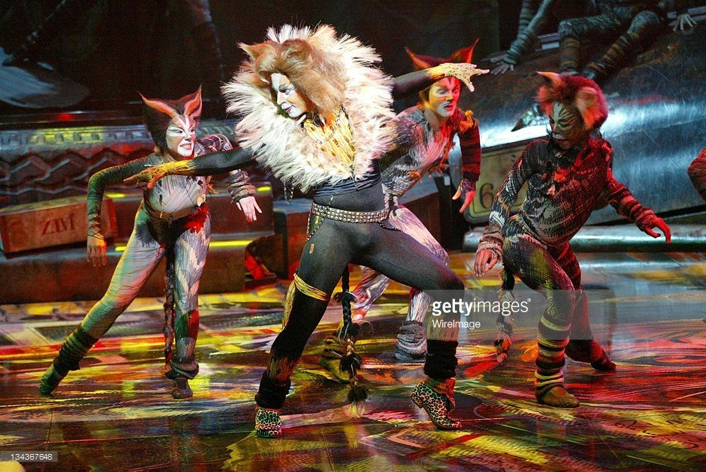 Pin by Joana Chucova on Cats the musical in 2020 Cats