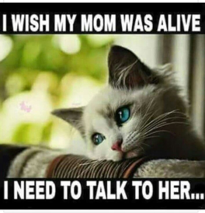 It Doesnt Get Easier I Miss My Mom Mom In Heaven I Miss My Mom Miss You Mom