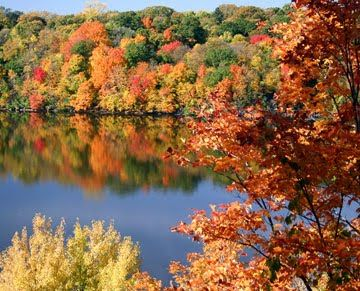 6 Fall Hikes Within 60 Miles Of Milwaukee Wisconsin Fall Colors Fall Foliage Fall Hiking