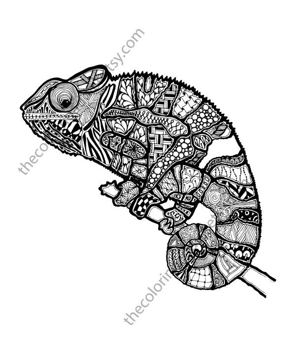 Zentangle lizard coloring page, animal zentangle colouring page ...