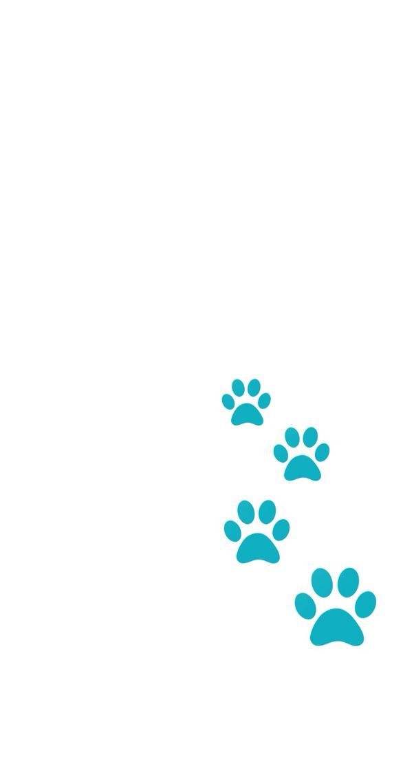 Minimal white teal turquoise dog paw prints phone wallpaper iphone background lock screen from media-cache-ak0.pinimg.com