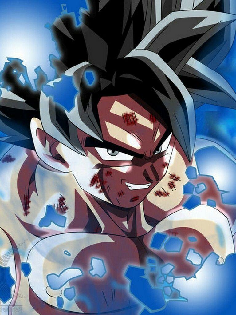 Goku Instituto Supremo Anime Dragon Ball Super Anime Dragon
