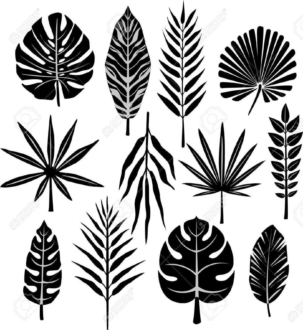 Los Angeles Palm Trees Black And White Google Search Folha Estampada Trabalhos Manuais Folhas Set of 19 doodle tropical leaves clipart elements in black and white with both transparent backgrounds. pinterest
